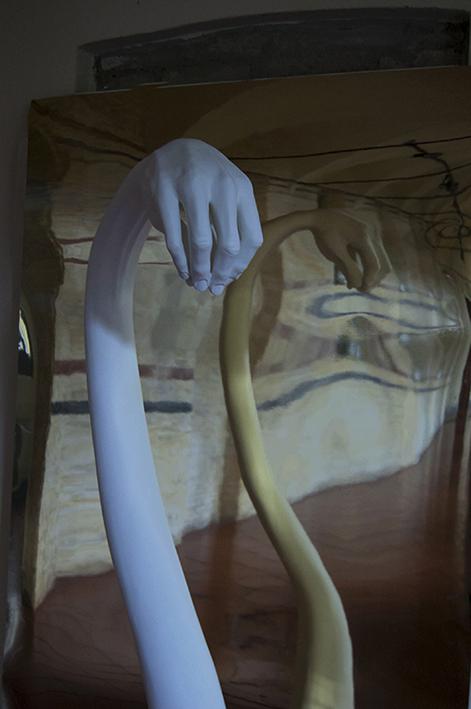 Alessandro Boezio, La metamorfosi del cigno